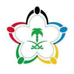 وزارة الرياضة تصدر متطلبات شهادة الكفاءة المالية للأندية
